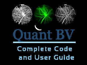 quantbv-complete-code