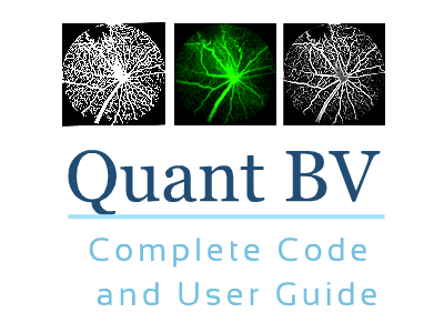 Download Quant BV