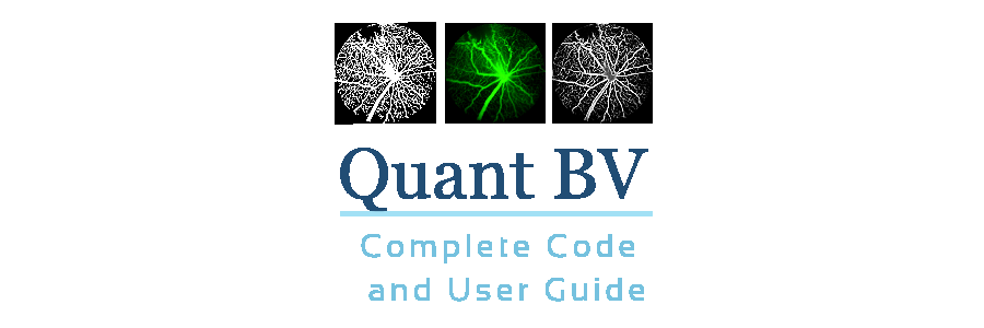 Quant BV Complete Code